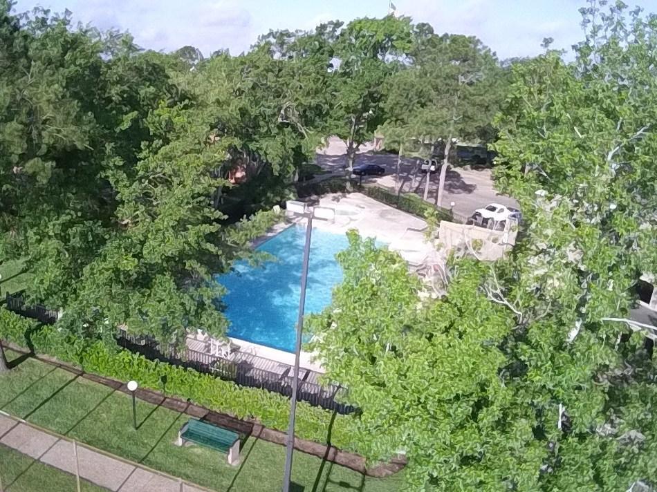 Swimming Pool at Brad's