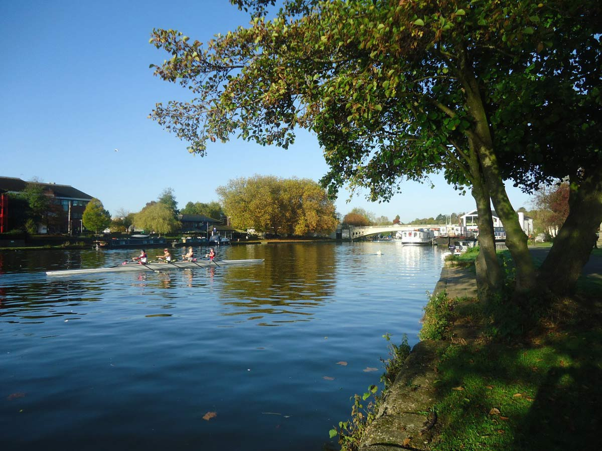 Sunny morning on the River Thames